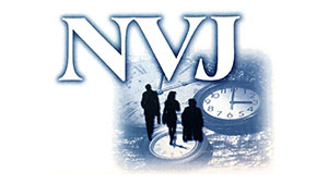 NVJ Consulting
